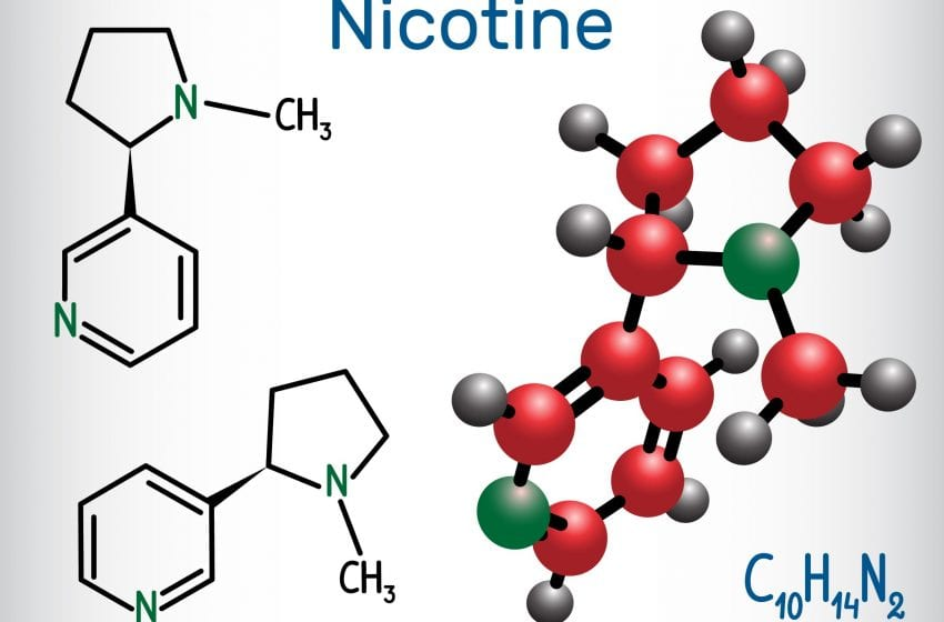 Spotlight on Nicotine