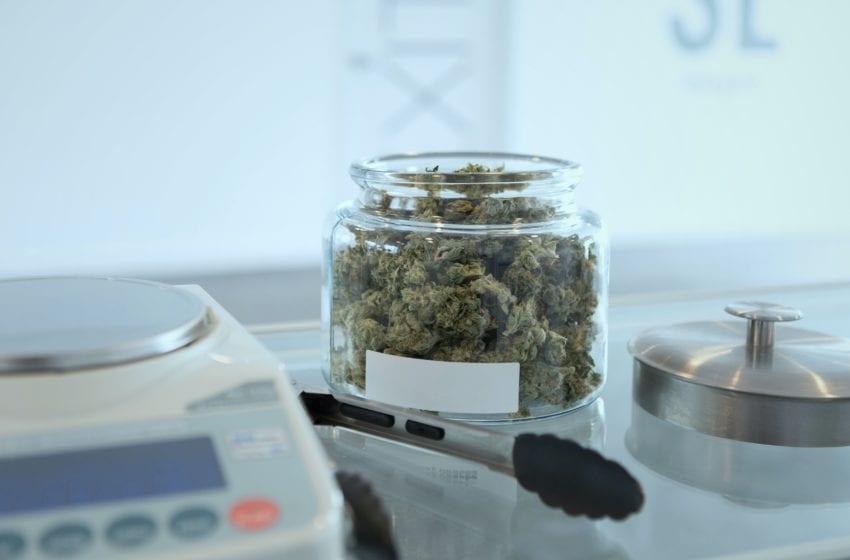 Montana Supreme Court Rejects Pot-Initiative Lawsuit