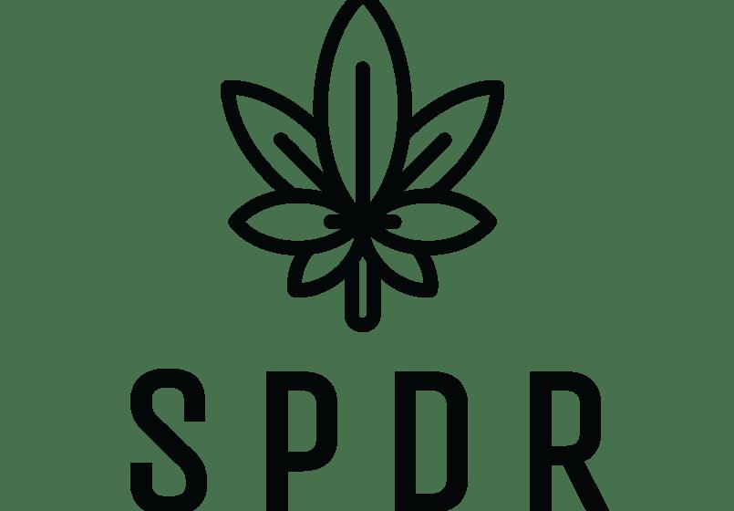 Spyder Cannabis Acquires Vape Retailer 180 Smoke