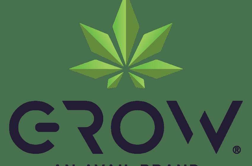 Avail Enters Marijuana Market With Home Grow Kits