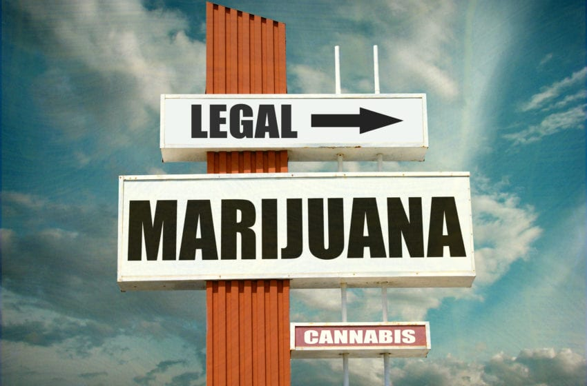 U.S. Senators Launch Bid for Federally Legal Marijuana