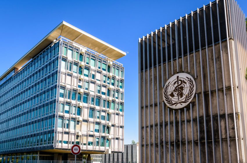 Group: UK COP9 Delegation Must Support Science