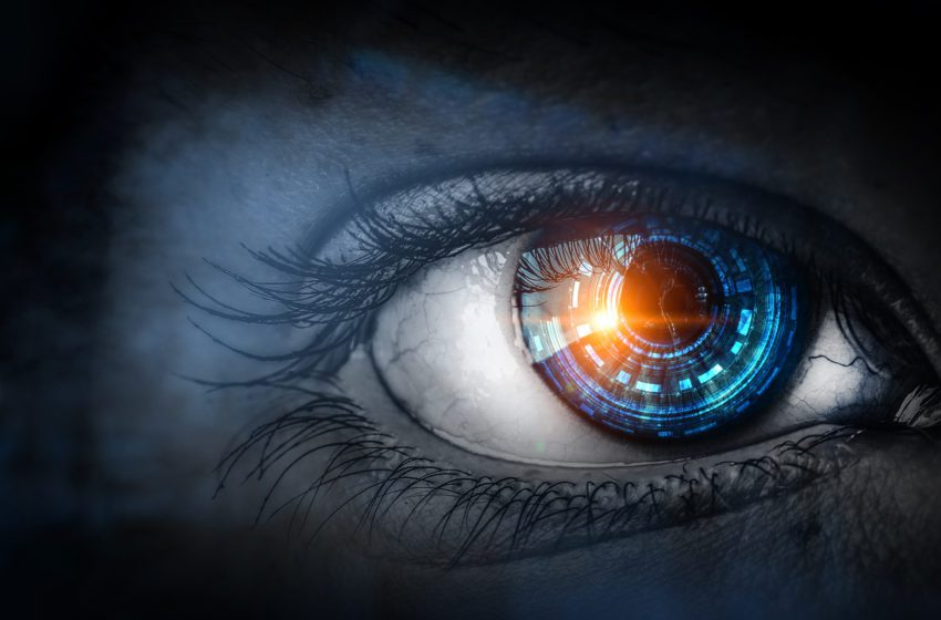 The Watchful Eye